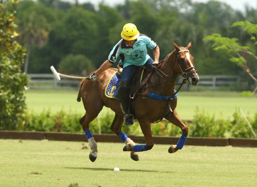 Piaget vs. Longfield - USPA Eastern Challenge Photos